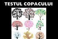 Testul copacului – Află ce spune despre tine imaginea pe care o alegi