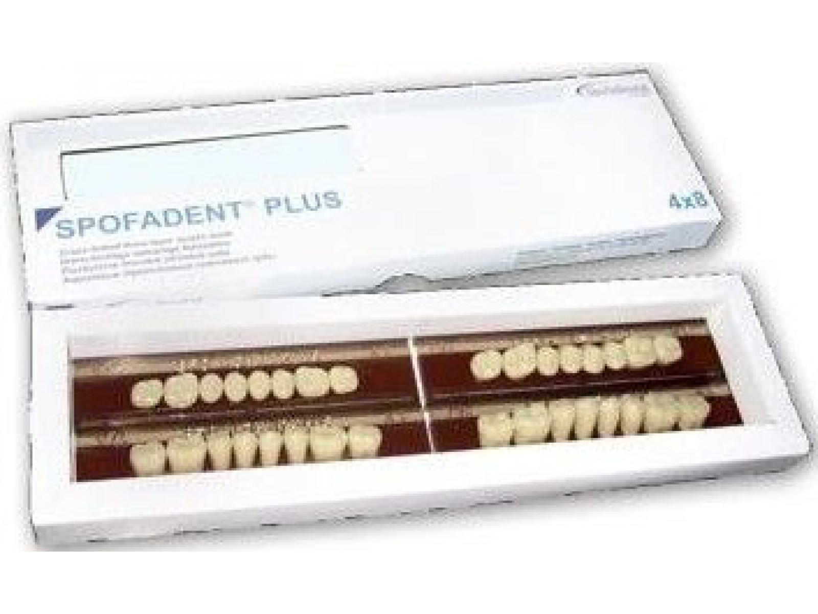 Helios Medical&Dental - dinti.JPG