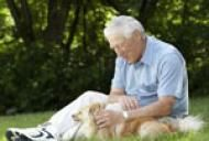Tratamente naturiste pentru afectiunile prostatei (marirea in volum a prostatei, cancerul de prostata si inflamatia prostatei)