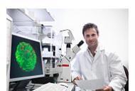 Intrebari si raspunsuri in legatura cu celulele stem