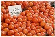 Ce trebuie sa stim despre alimentele organice / bio