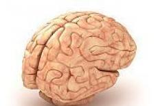 pierderea în greutate ceață creier