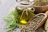 Beneficiile uleiului si ale semintelor de canepa