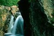 Cele 7 beneficii ale apei