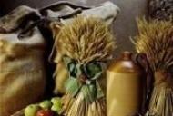 Beneficiile unei diete bogate in fibre