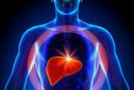 Ce presupune numarul mare de transaminaze hepatice?